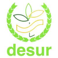 DESUR Logo